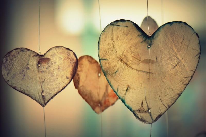 Nos Coups de coeur