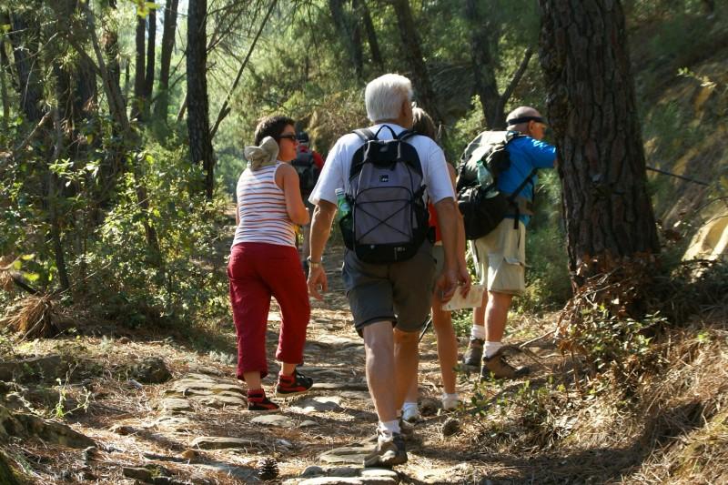 Walking and hiking