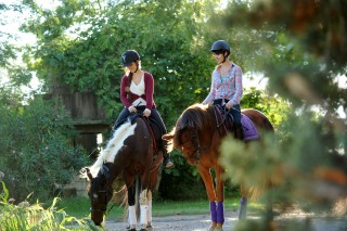 Balade à cheval en Provence Occitane