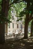 Le Cèdre de Montcaud