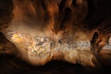 la-fresque-des-lions-de-la-caverne-du-pont-d-arc-patrick-aventurier-9718